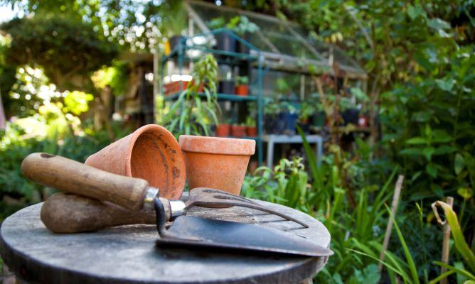tareas-jardineria-julio-668x400x80xX